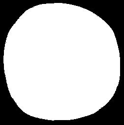 Bon oeil - Identité visuelle plateforme