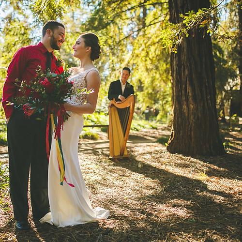 Redwood Elopement