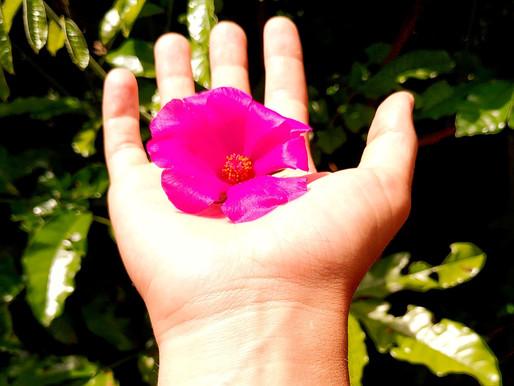 Blog #5: gevoeligheid als kracht