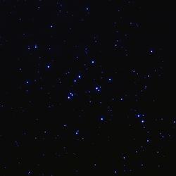 M44 77 10 WEB
