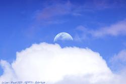 30 avril 2020 - Lune