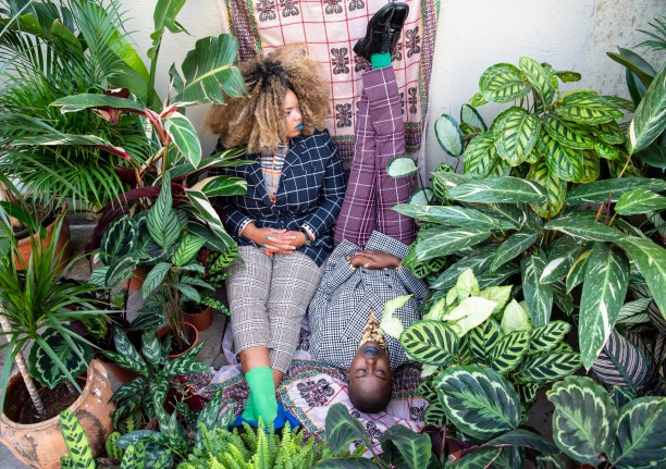The Garden Museum in Lambeth is launching the first ever Houseplant Festival, curated by Alice Vincent