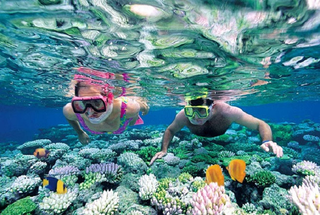 Two snorkellers observing the fish and corals in the ocean