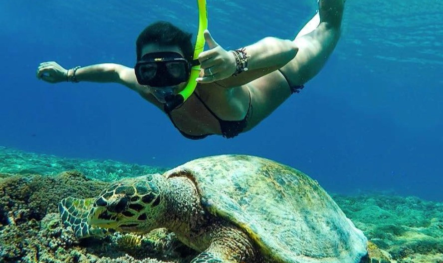 A girl snorkeling with the turtles in Gili Trawangan