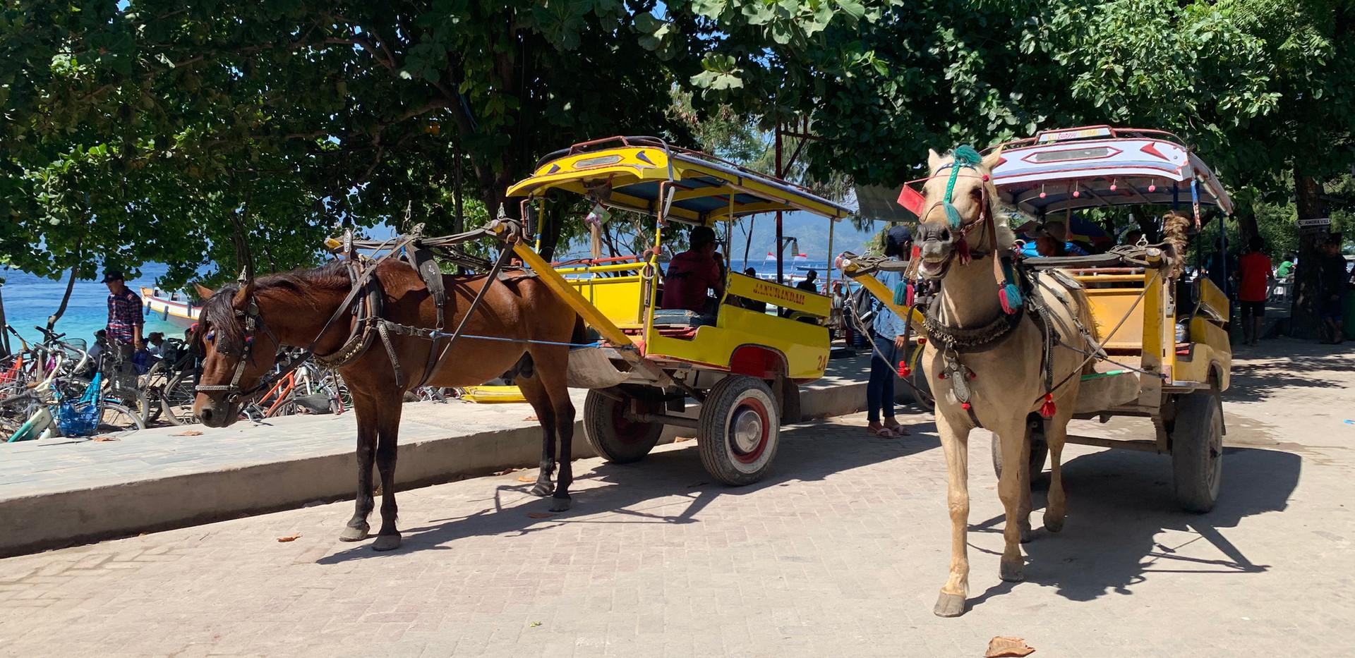 Horse Carts - Cidomos