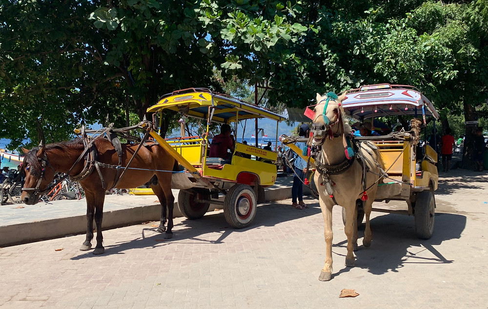 These horse-drawn carriages, known as cidomos, are the closest thing to motorized vehicles you'll find on Gili T.