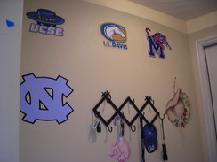 College & Pro Logos and Mascots