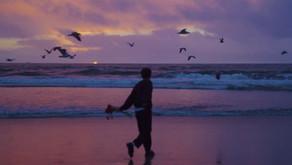 Music spotlight: Limbo EP by Postcard Boy