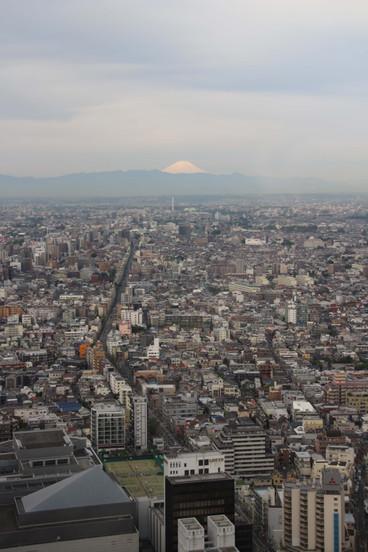 Mount Fuji, Tokyo