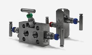 instrumentation-manifold-valves-v2-1.png