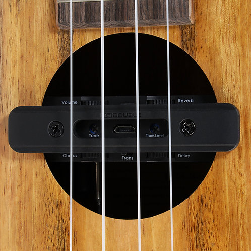 Add On:  Double Soundhole Pickup and Installation