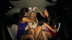 Limo Miami Bachelors/ Bachelorettes