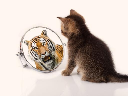 זהות עצמית אמיתית למול זהות עצמית כוזבת