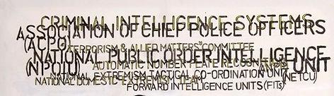 Orwellian (Detail.jpg