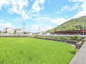 山の緑と空の青