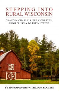 book cover of stepping into rural wisconsin