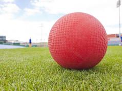 Kickball Camp (Co-ed)