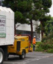 TREE TRIMMING SERVICE IN RANCHO PALOS VERDES CA