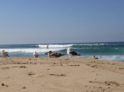 Hermosa Beach - by Carlos Rivera
