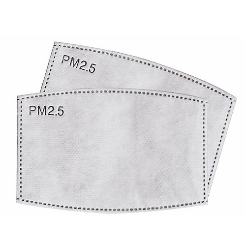 PM 2.5 Filters 10 pack Adult & Kid sizes