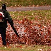 NJ Superior Court Judge Rejects Challenge to Montclair 2021 Leaf Blower Ordinance