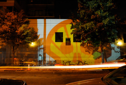 Shell Projection