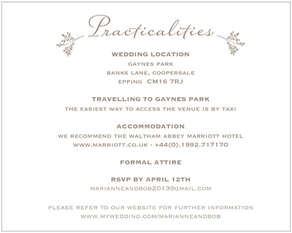 Wedding ( Practicalities ) Invitation