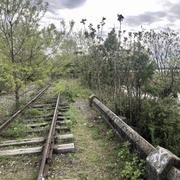 Montclair Councilor Calls On Gov. Murphy To Support Essex Hudson Greenway