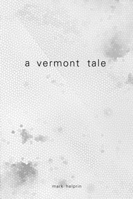 A Vermont Tale Book Cover