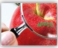 APPCC - Primeiro Ato - Teatro empresa