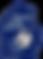 MSA Logo_1x1.png