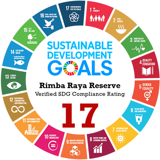 All 17 SDGs numbers Black2RR.png