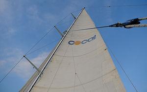 Hoist the sails on Sailing Yacht COCAL