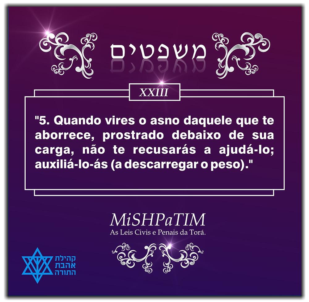 As Leis Civis e Penais da Torá, Transmitidas pelo Eterno a Moshé.