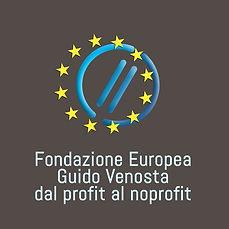 Fondazione-europea-Guido-Ve.jpg