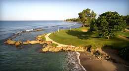 golf-teethofthedog-five.jpg