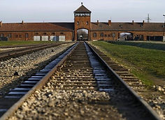2221103_osvetim-koncentrak-prezit-holoka