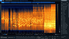 We operate a specialized service for improving sound quality, not voice analysis.