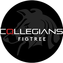 Collegians Figtree Logo