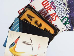 Laura Penna participa da edição especial do jornal da Greco Design dedicado às mulheres