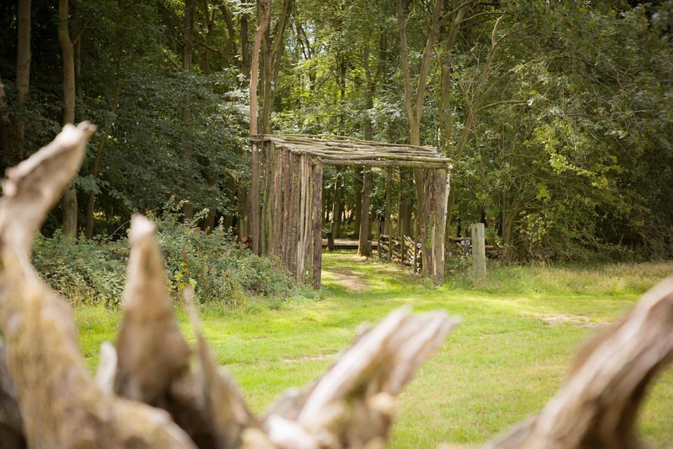 Woodland entrance 1.jpeg