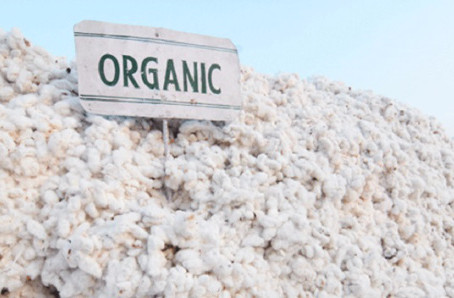 What is organic cotton, and why does it matter?