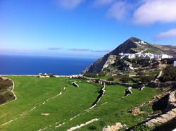 iPhone extra scenery pix 023.JPG