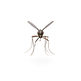 Mosquito.H01.2k (1).png