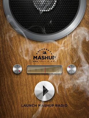 MASHUP APP.jpg