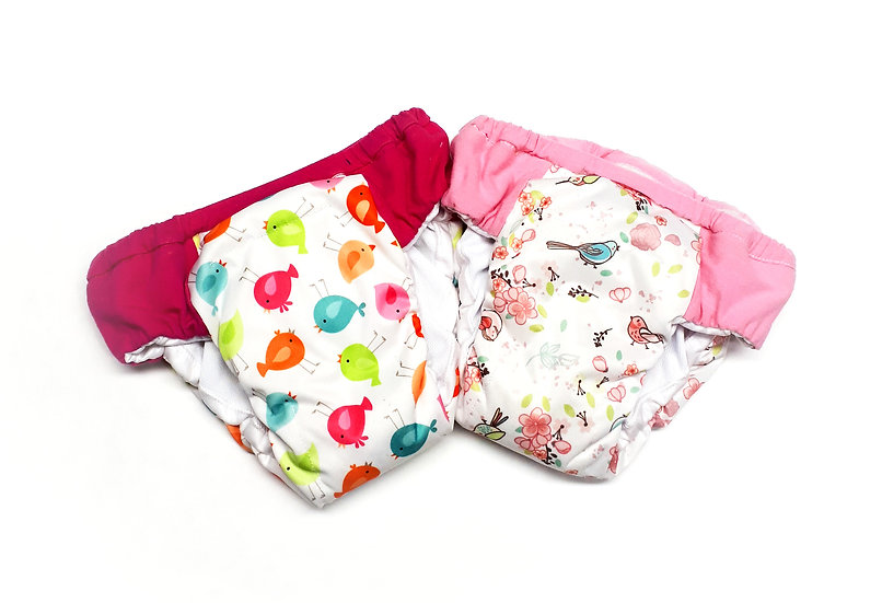 Reusable Washable potty training pants with waterproof PUL of colorful birds and flowers front view