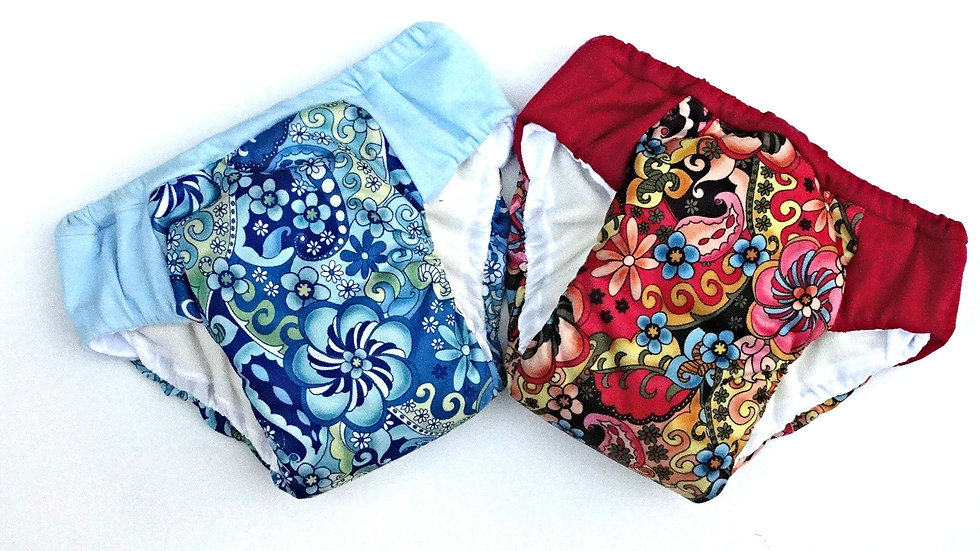 Set of 2 Girls Regular/Daytime Potty Training Pants