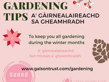 winter gardening_social media.png