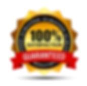 100-satisfaction-guaranteed-gold-label-w