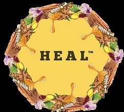heal_logo_colour.png